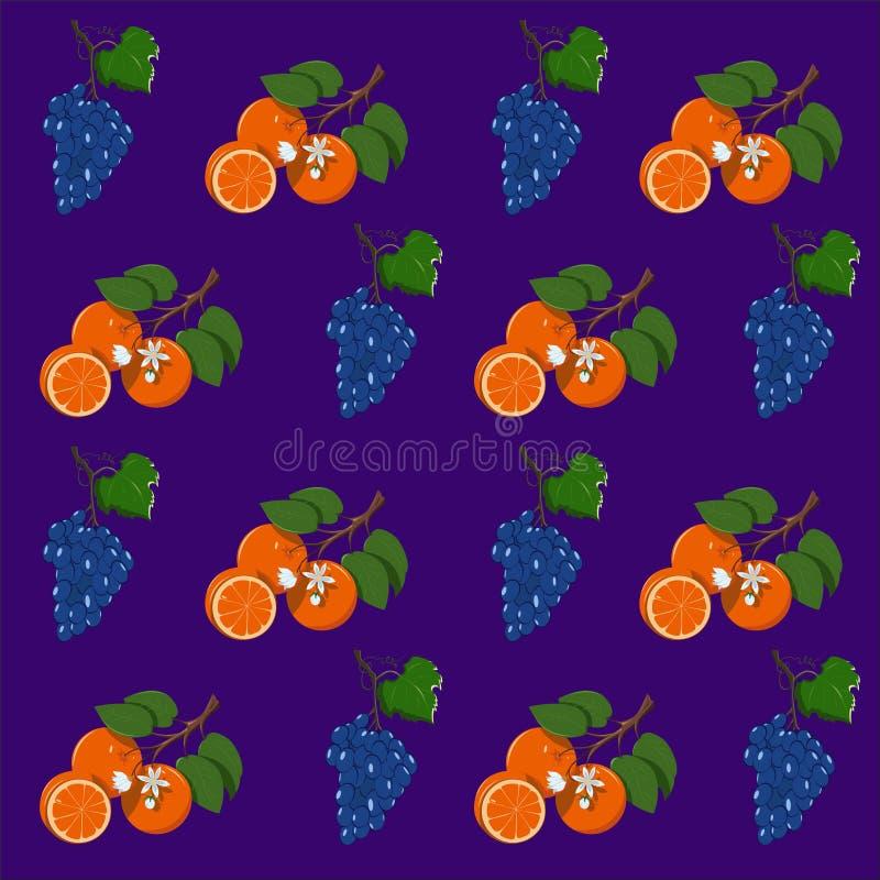 Πορτοκάλι και σταφύλια σχεδίων φρούτων διανυσματική απεικόνιση