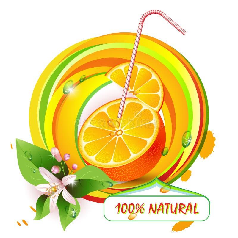 Πορτοκάλι φετών με τα λουλούδια διανυσματική απεικόνιση