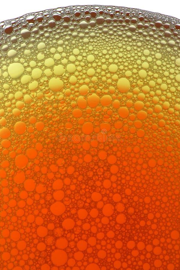 πορτοκάλι φυσαλίδων κίτρ& στοκ φωτογραφία