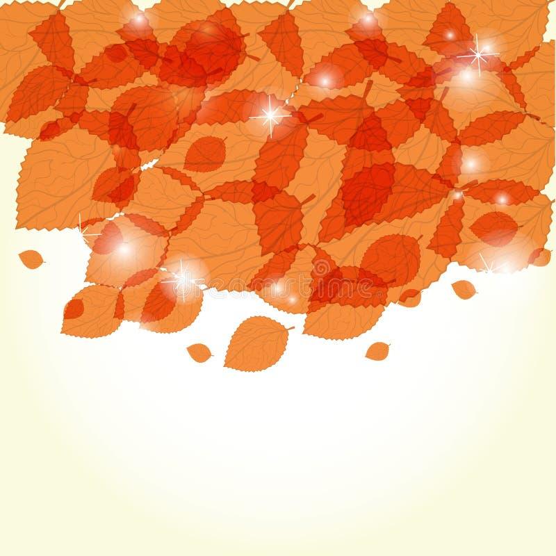 πορτοκάλι φύλλων διανυσματική απεικόνιση