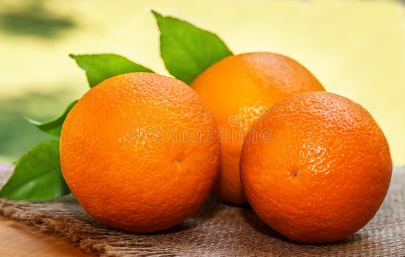 Πορτοκάλι υπαίθρια στο πράσινο bokeh στοκ εικόνα με δικαίωμα ελεύθερης χρήσης