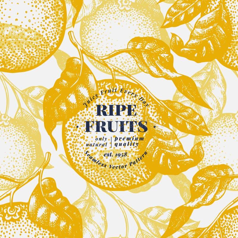 Πορτοκαλί άνευ ραφής σχέδιο δέντρων Συρμένη χέρι διανυσματική απεικόνιση φρούτων Χαραγμένο ύφος Εκλεκτής ποιότητας υπόβαθρο εσπερ απεικόνιση αποθεμάτων