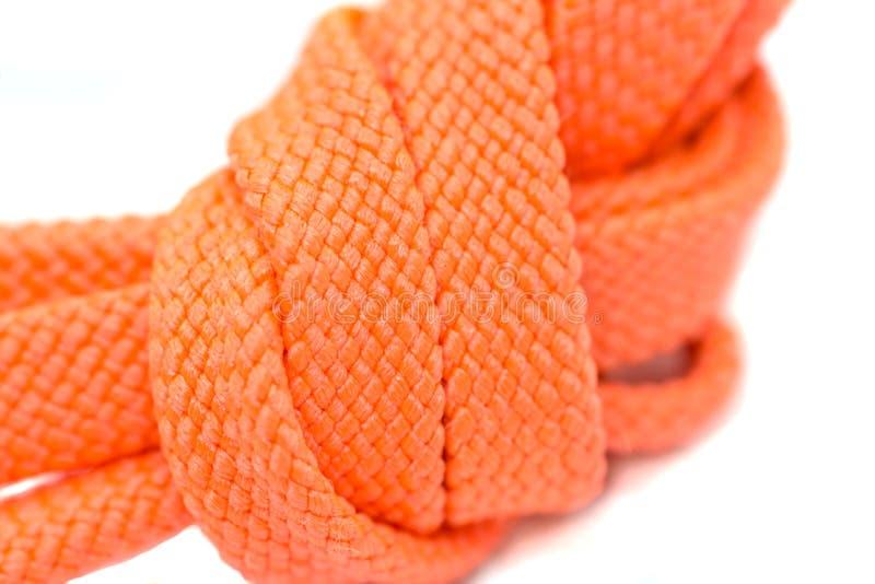 Πορτοκαλί κορδόνια, μακροεντολή, απομονωμένα σε λευκό φόντο στοκ φωτογραφίες