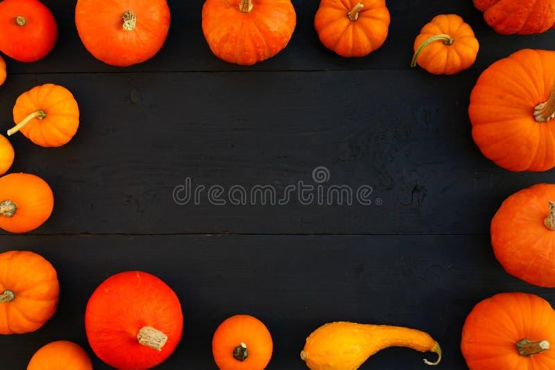 Πορτοκαλί πλαίσιο κολοκυθών στους μαύρους ξύλινους πίνακες στοκ φωτογραφίες