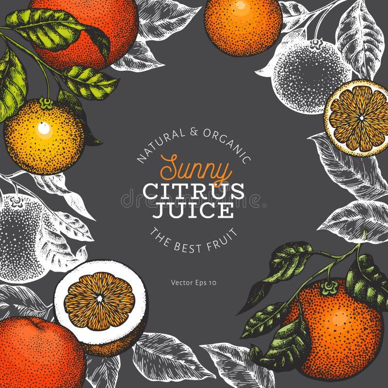 Πορτοκαλί πρότυπο σχεδίου φρούτων Συρμένη χέρι διανυσματική απεικόνιση φρούτων στο σκοτεινό υπόβαθρο Χαραγμένο υπόβαθρο εσπεριδοε ελεύθερη απεικόνιση δικαιώματος