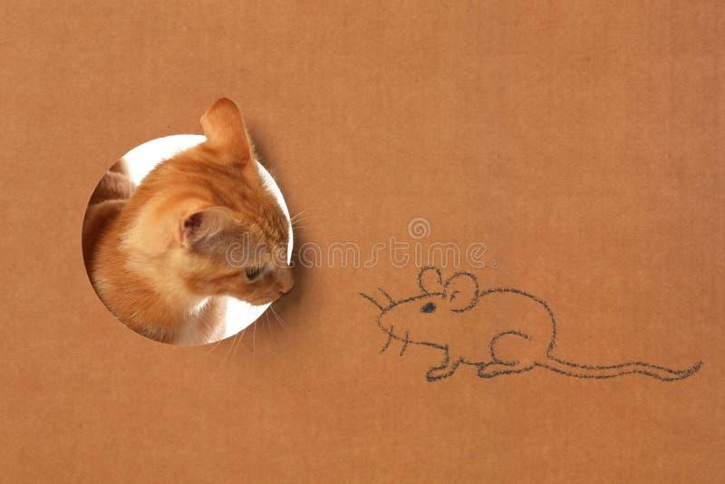 Πορτοκαλί τιγρέ γατάκι σε ένα παιχνίδι κουτιών από χαρτόνι με ένα σχέδιο ποντικιών στοκ εικόνα