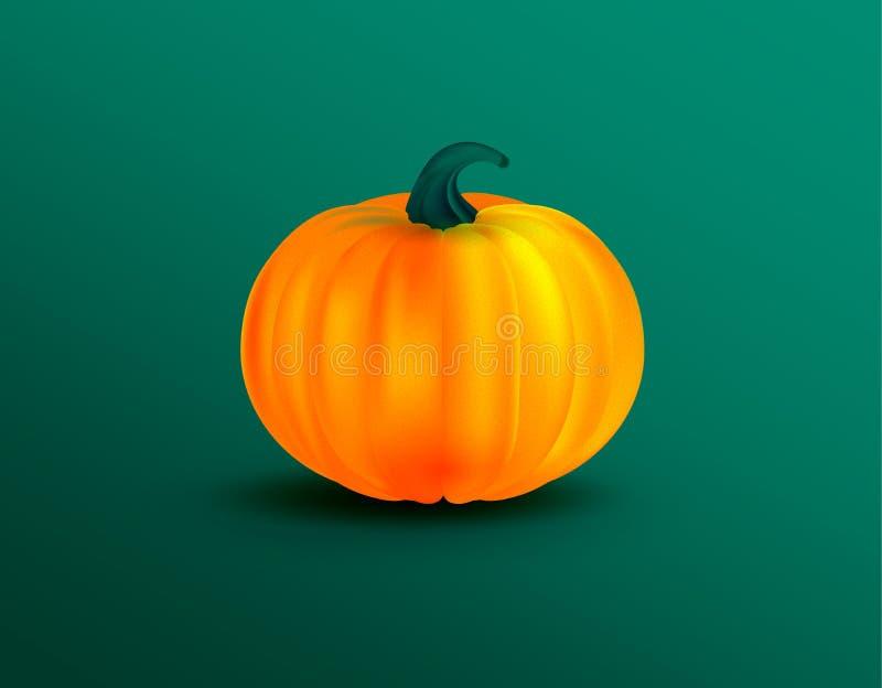 Πορτοκαλιά διανυσματική απεικόνιση κολοκύθας Κολοκύθα αποκριών φθινοπώρου, φυτικό γραφικό εικονίδιο στο πράσινο υπόβαθρο απεικόνιση αποθεμάτων
