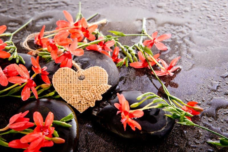 Πορτοκαλιά λουλούδια Freesia Laxa με τις μαύρες πέτρες και το Bu μασάζ στοκ φωτογραφία με δικαίωμα ελεύθερης χρήσης