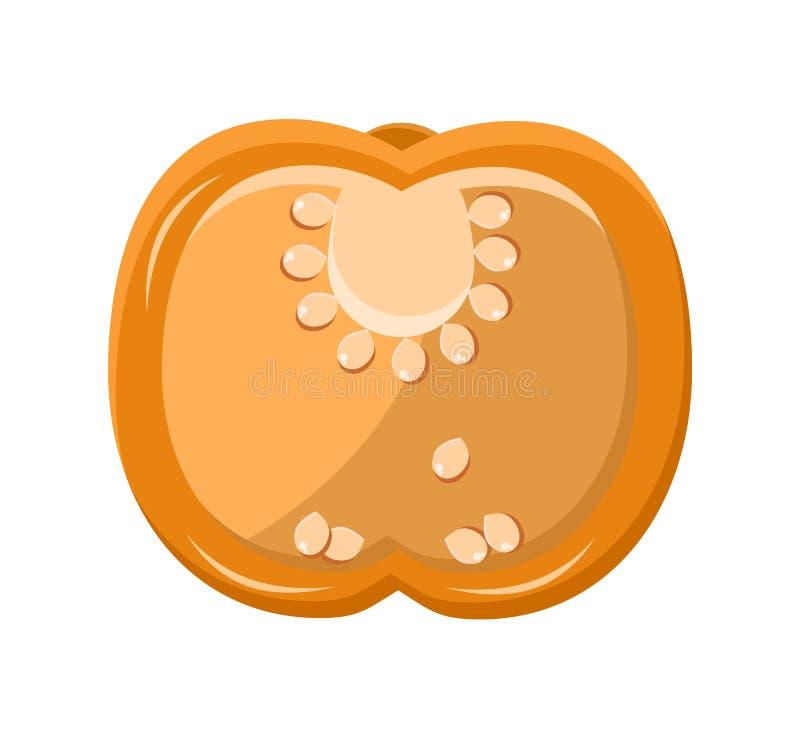 Πορτοκαλιά φέτα πιπεριών με τη διανυσματική απεικόνιση σπόρων ελεύθερη απεικόνιση δικαιώματος