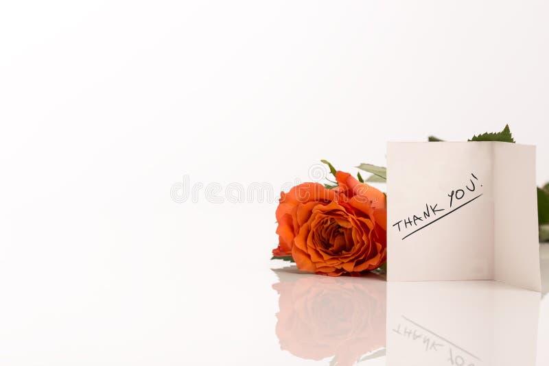 Πορτοκαλής αυξήθηκε εκτός από σας ευχαριστεί ευχετήρια κάρτα στοκ εικόνες με δικαίωμα ελεύθερης χρήσης