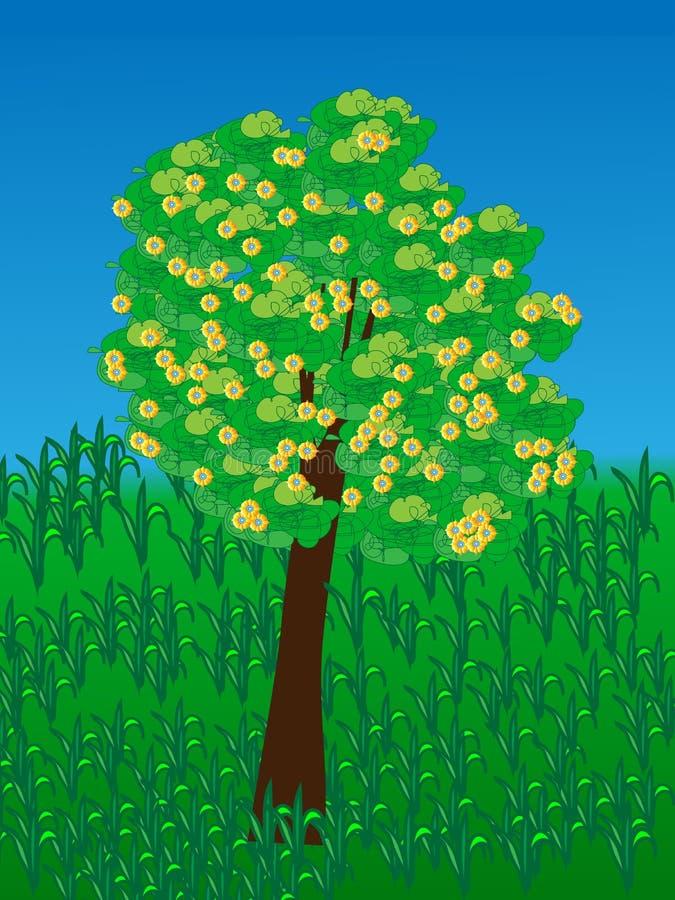 πορτοκαλί δέντρο φυλλώματος ανθών ανασκόπησης στοκ φωτογραφία με δικαίωμα ελεύθερης χρήσης