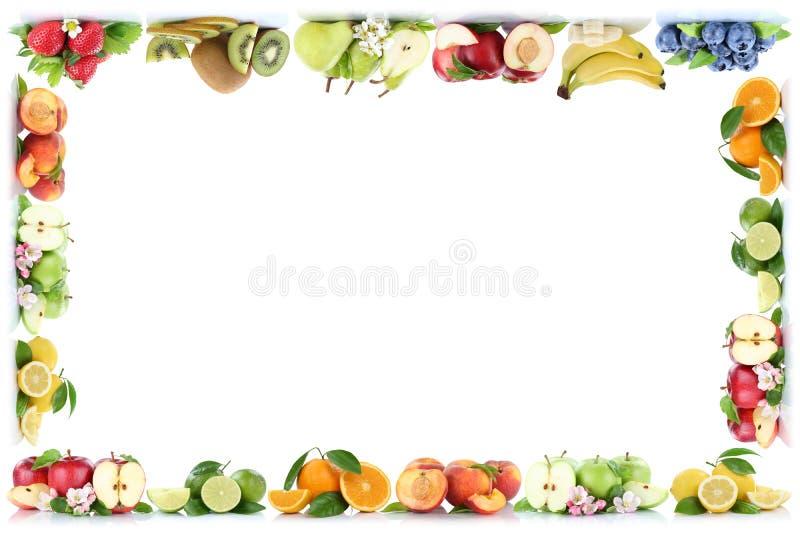 Πορτοκαλί διάστημα αντιγράφων πλαισίων πορτοκαλιών μήλων μήλων φρούτων copyspace διανυσματική απεικόνιση