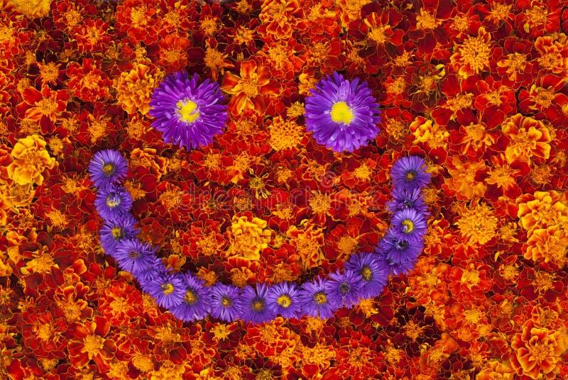Πορτοκαλί υπόβαθρο, πρόσωπο χαμόγελου από τα λουλούδια στοκ εικόνες