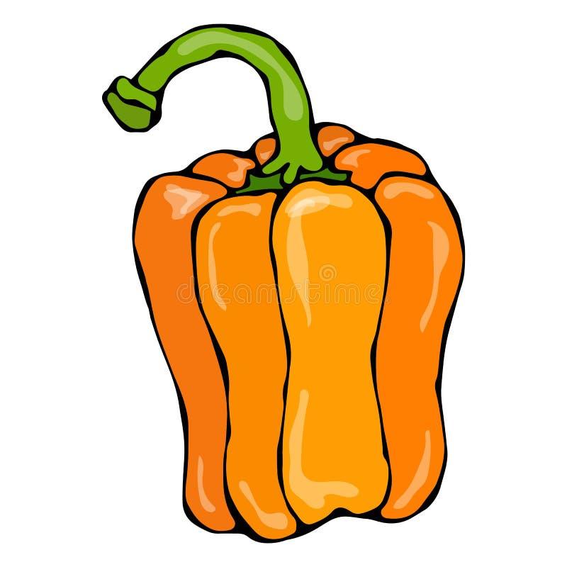 Πορτοκαλιά πάπρικα, πιπέρι κουδουνιών ή γλυκό βουλγαρικό πιπέρι η ανασκόπηση απομόνωσε το λευκό Χέρι ρεαλιστικού και ύφους Doodle απεικόνιση αποθεμάτων