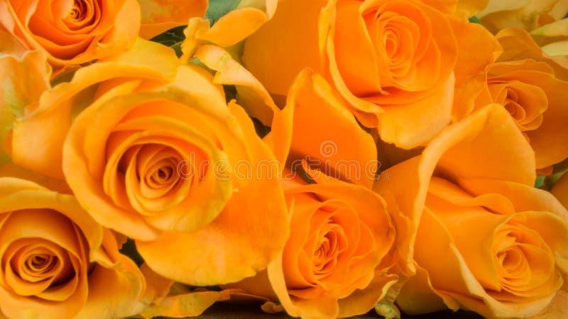 Πορτοκαλιά τριαντάφυλλα στην πλάκα στοκ εικόνες