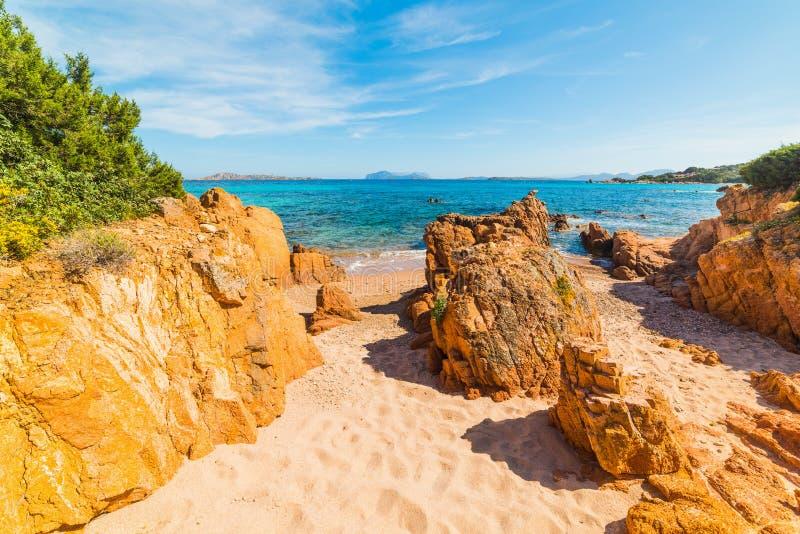 Πορτοκαλιοί βράχοι στην παραλία Romazzino στοκ φωτογραφία