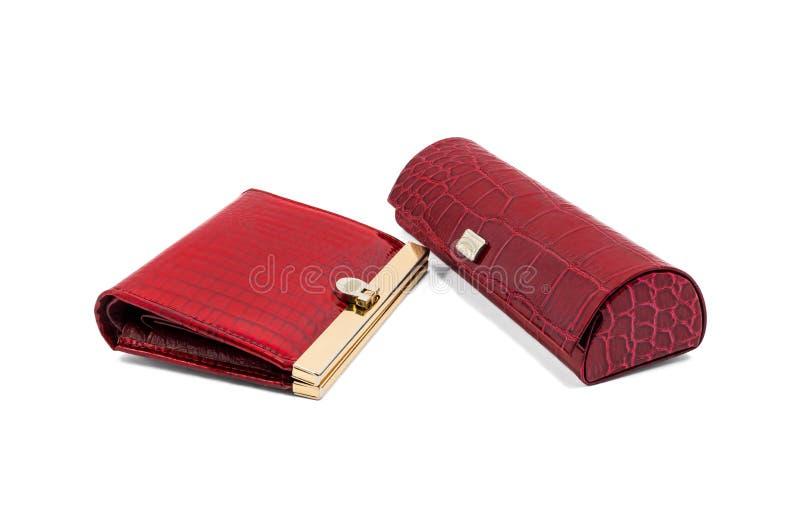 Πορτοφόλι και θέαμα-περίπτωση στοκ φωτογραφία με δικαίωμα ελεύθερης χρήσης