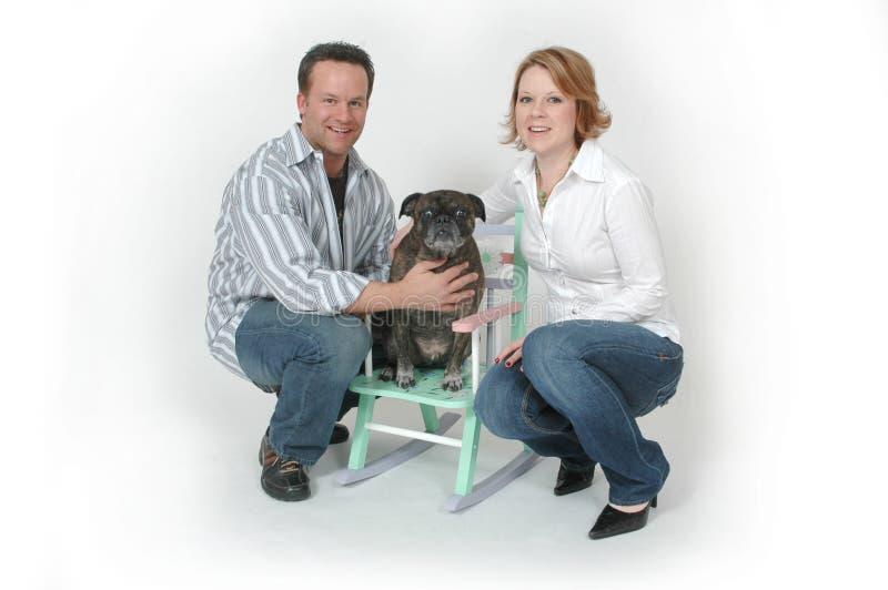 πορτρέτα κατοικίδιων ζώων στοκ εικόνες