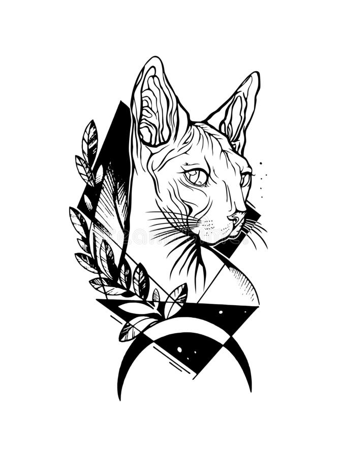 Πορτρέτο γατών Συρμένη χέρι απεικόνιση δερματοστιξιών Γάτα Sphynx διανυσματική απεικόνιση