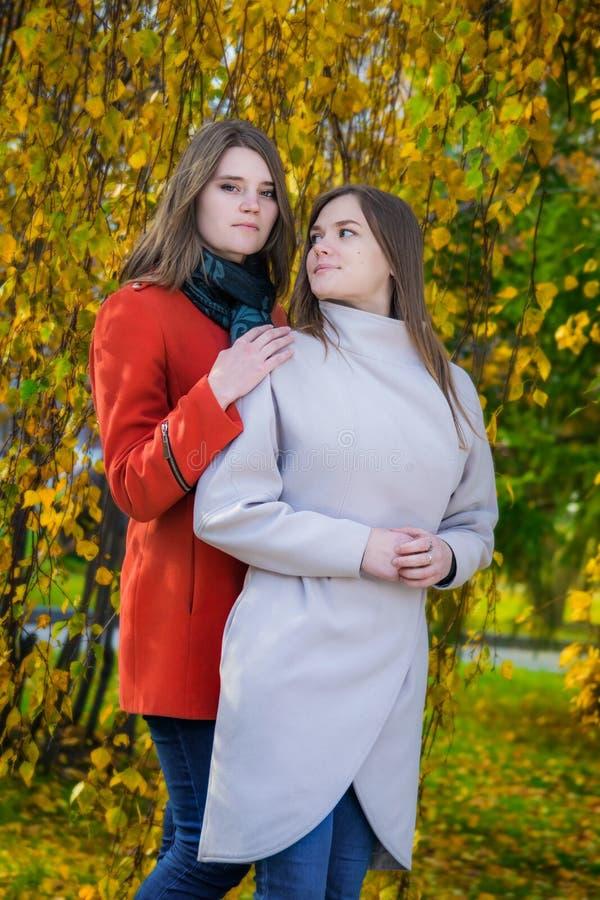 Πορτρέτο δύο όμορφες ευτυχείς φίλες μια ηλιόλουστη ημέρα φθινοπώρου στοκ φωτογραφία με δικαίωμα ελεύθερης χρήσης