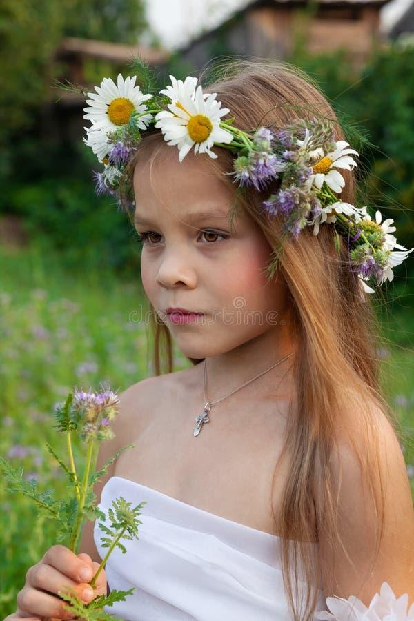 Πορτρέτο ενός κοριτσιού σε ένα στεφάνι των chamomiles στο κεφάλι της με ένα λουλούδι στα χέρια στοκ φωτογραφίες με δικαίωμα ελεύθερης χρήσης