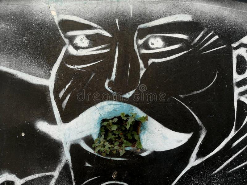 πορτρέτο ενός μεξικανού, γκράφιτι στοκ φωτογραφίες