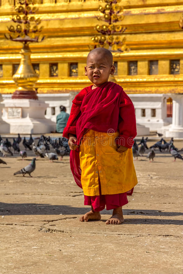 Πορτρέτο ενός μικρού μοναχού στοκ φωτογραφία