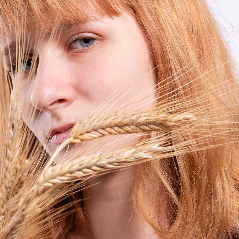 Πορτρέτο ενός ξανθού κοριτσιού με τα αυτιά του σίτου στοκ εικόνα