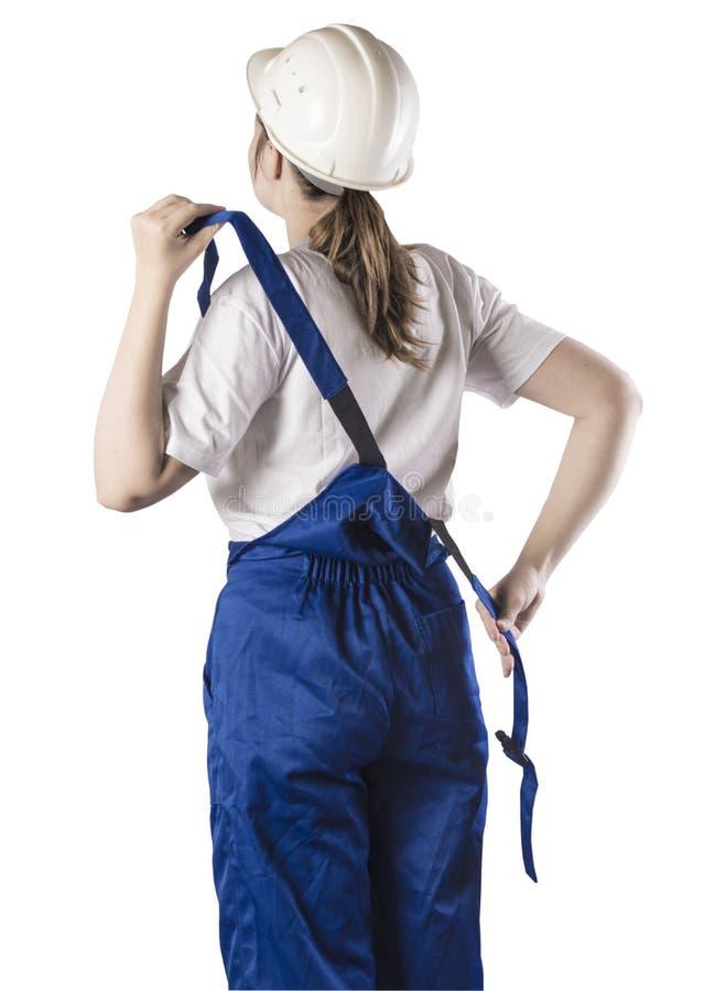 Πορτρέτο ενός ΟΙΚΟΔΟΜΟΥ στην άσπρη απομόνωση στοκ εικόνες με δικαίωμα ελεύθερης χρήσης