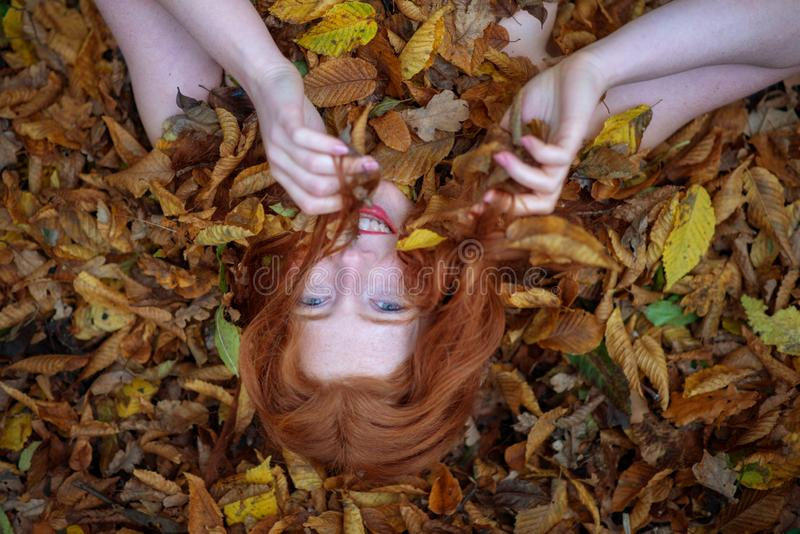 Πορτρέτο ενός χαριτωμένου νέου καλού κοριτσιού, που καλύπτεται με τα κόκκινα και πορτοκαλιά φθινοπωρινά φύλλα Όμορφη προκλητική γ στοκ φωτογραφία με δικαίωμα ελεύθερης χρήσης