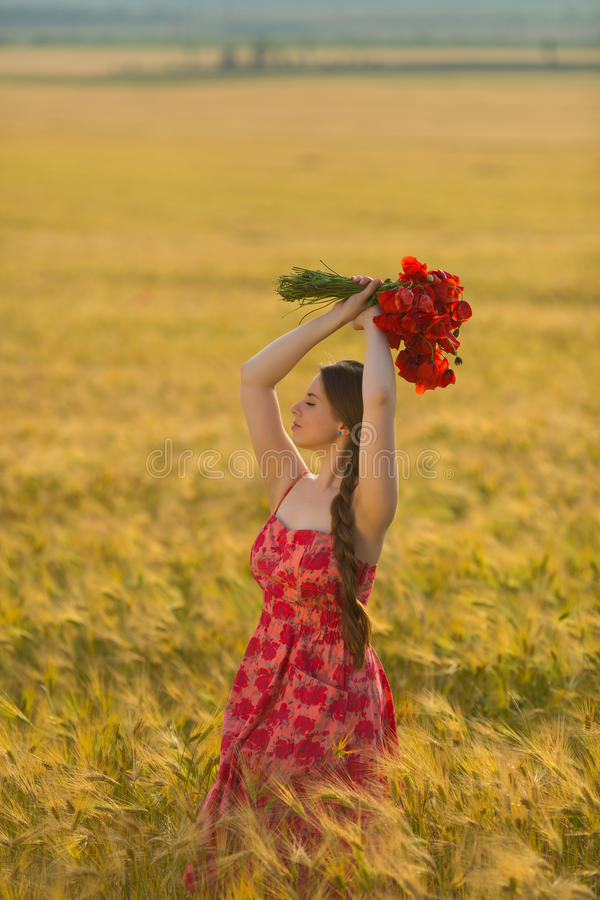 Πορτρέτο ενός όμορφου κοριτσιού με μια ανθοδέσμη των παπαρουνών στον τομέα σίτου στοκ φωτογραφίες