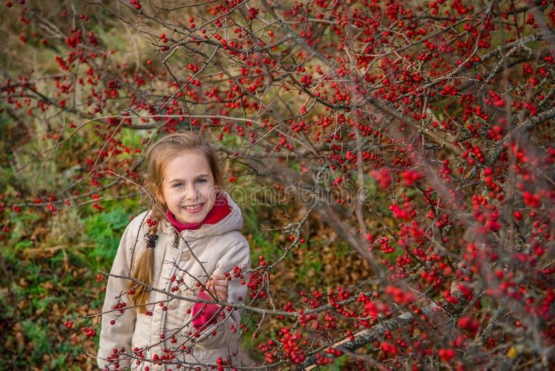Πορτρέτο ενός όμορφου κοριτσιού με τα κόκκινα μούρα χρώματα φθινοπώρου της φύσης στοκ εικόνες