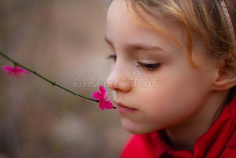 Πορτρέτο ενός όμορφου μικρού κοριτσιού με τα λουλούδια στοκ εικόνες