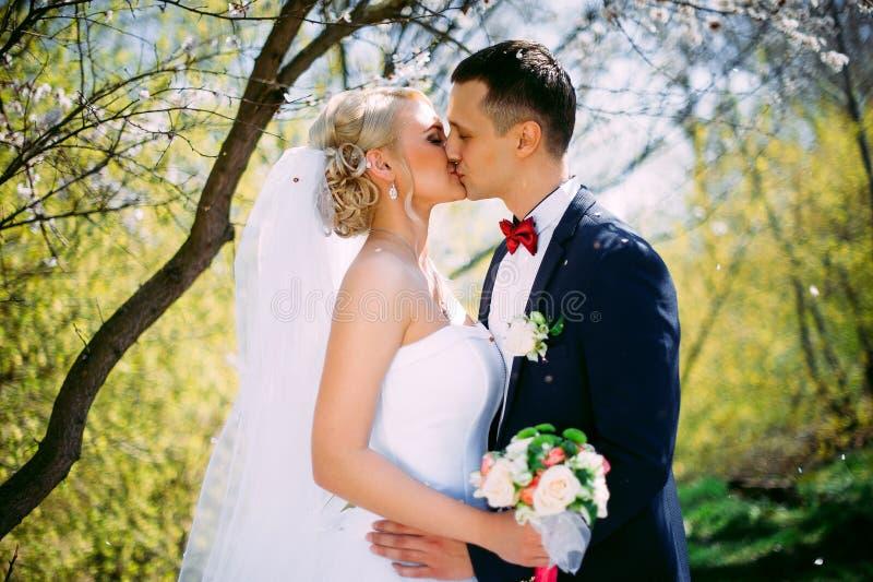 Πορτρέτο κινηματογραφήσεων σε πρώτο πλάνο φύσης γαμήλιων ζευγών φιλήματος την άνοιξη Kissi στοκ εικόνα με δικαίωμα ελεύθερης χρήσης