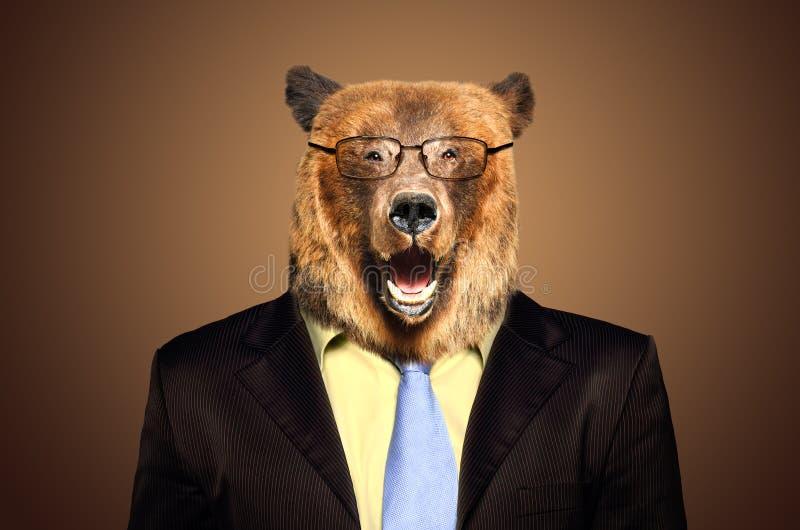 Πορτρέτο μιας αρκούδας σε ένα επιχειρησιακό κοστούμι στοκ φωτογραφία