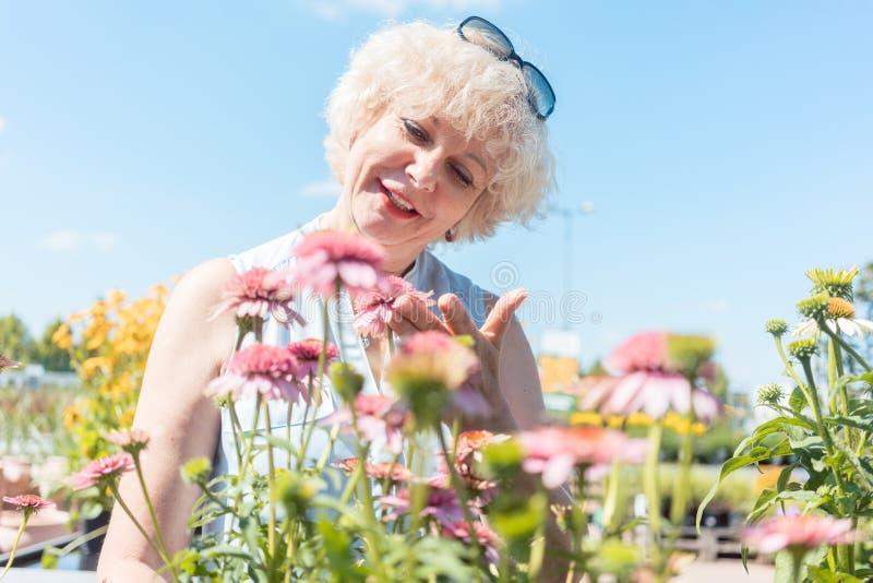 Πορτρέτο μιας γαλήνιας ανώτερης γυναίκας που στέκεται στον κήπο σε ένα SU στοκ εικόνες με δικαίωμα ελεύθερης χρήσης