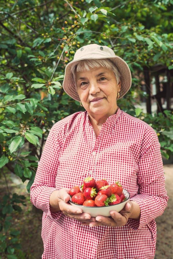 Πορτρέτο μιας ηλικιωμένης γυναίκας που κρατά τις φράουλες κύπελλων στοκ φωτογραφία με δικαίωμα ελεύθερης χρήσης