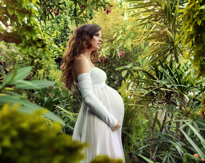 Πορτρέτο μιας beuatiful εγκύου γυναίκας στοκ φωτογραφία