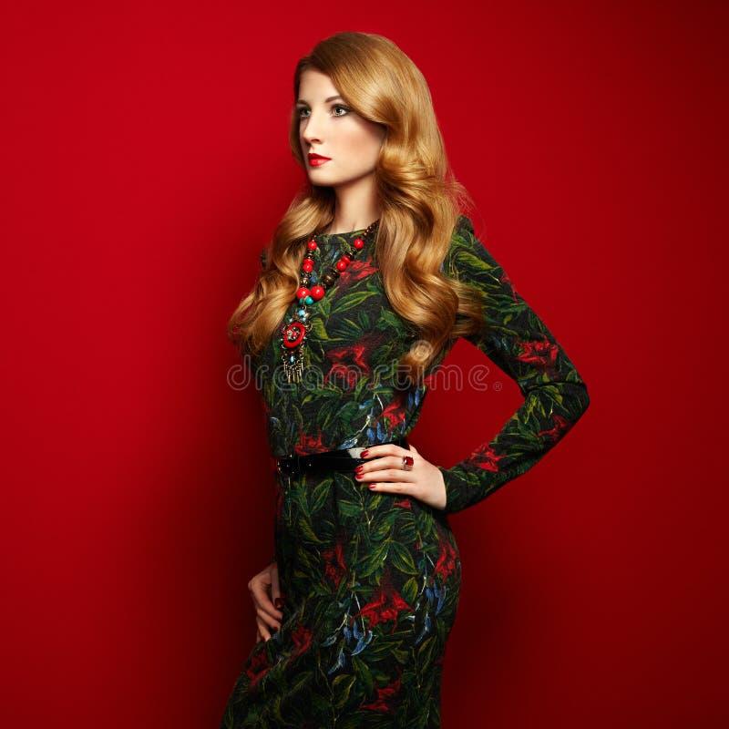 Πορτρέτο μόδας της κομψής γυναίκας με τη θαυμάσια τρίχα στοκ εικόνες