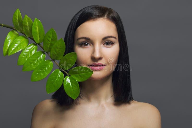 Πορτρέτο ομορφιάς στούντιο του νέου brunette με το φυσικό τέλειο δέρμα σύνθεσης με το πράσινο εξωτικό φύλλο στο γκρίζο υπόβαθρο Έ στοκ φωτογραφίες με δικαίωμα ελεύθερης χρήσης