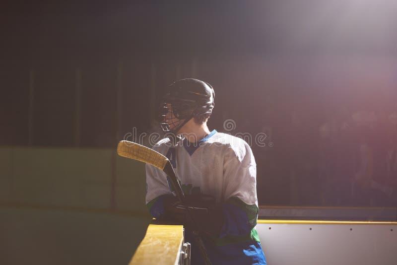 Πορτρέτο παικτών χόκεϋ πάγου στοκ εικόνες