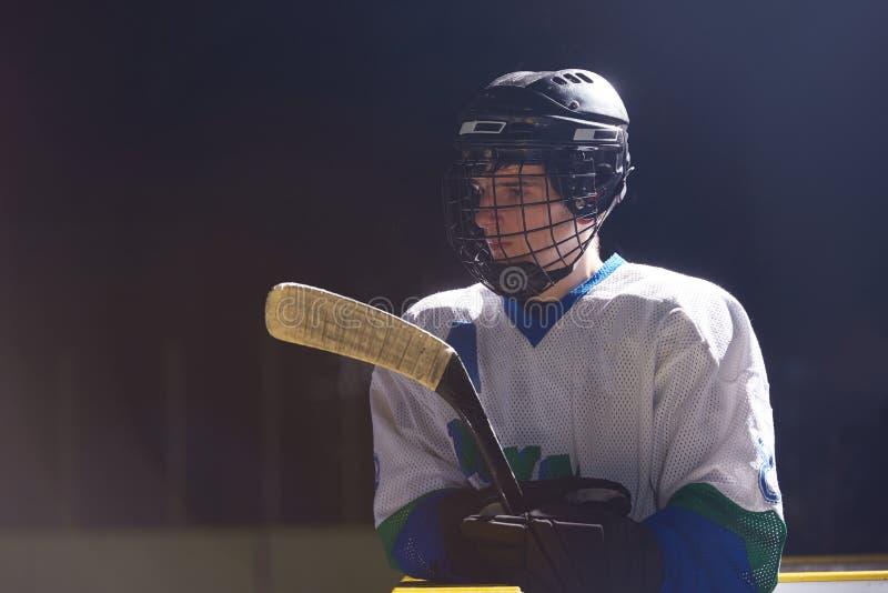 Πορτρέτο παικτών χόκεϋ πάγου στοκ φωτογραφίες με δικαίωμα ελεύθερης χρήσης