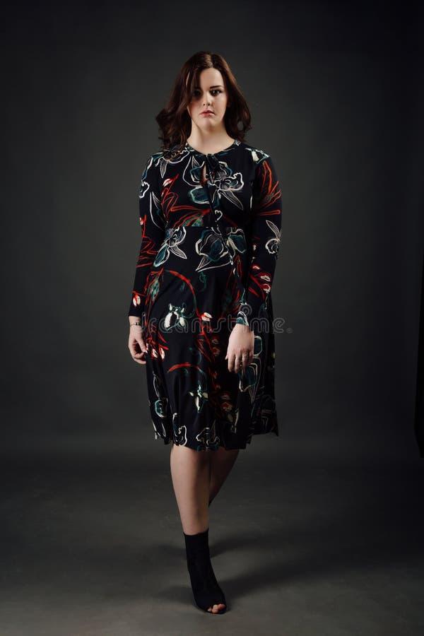 Πορτρέτο συν την πρότυπη παχιά γυναίκα μόδας μεγέθους στο γκρίζο υπόβαθρο στούντιο, υπέρβαρο θηλυκό σώμα στοκ φωτογραφία