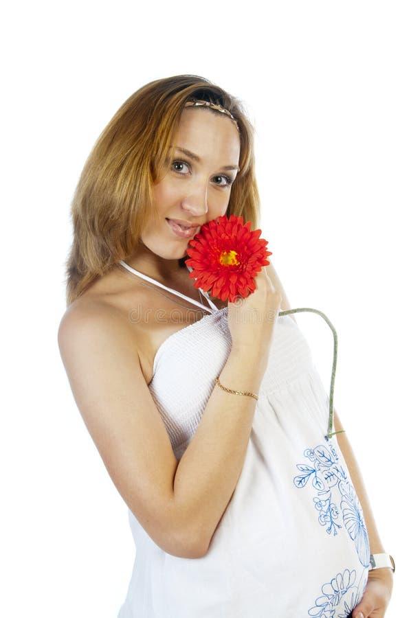 Πορτρέτο της εγκύου γυναίκας με το λουλούδι στοκ φωτογραφία με δικαίωμα ελεύθερης χρήσης