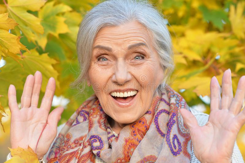 Πορτρέτο της ευτυχούς ανώτερης γυναίκας στο πάρκο φθινοπώρου στοκ φωτογραφία με δικαίωμα ελεύθερης χρήσης