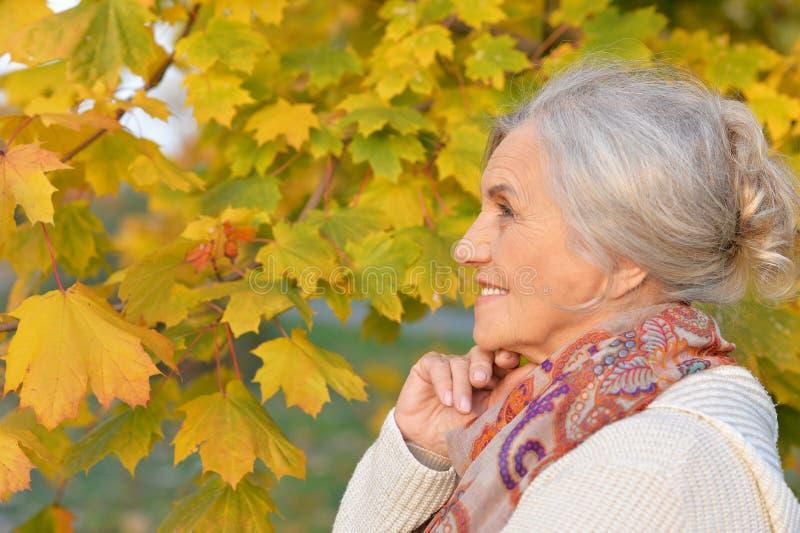 Πορτρέτο της ευτυχούς ανώτερης γυναίκας στο πάρκο φθινοπώρου στοκ εικόνα με δικαίωμα ελεύθερης χρήσης
