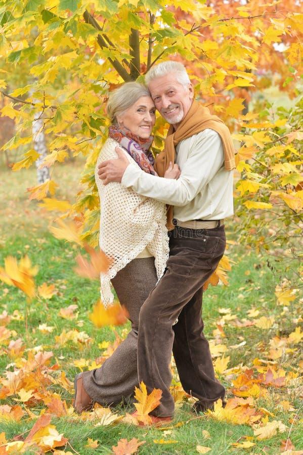 Πορτρέτο της ευτυχών ανώτερων γυναίκας και του άνδρα στο πάρκο στοκ εικόνα με δικαίωμα ελεύθερης χρήσης