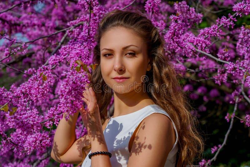 Πορτρέτο της νέας ελκυστικής γυναίκας με την καφετιά τρίχα στο άσπρο φόρεμα στο δέντρο Judas ανθών Το όμορφο κορίτσι θέτει ήπια σ στοκ εικόνες
