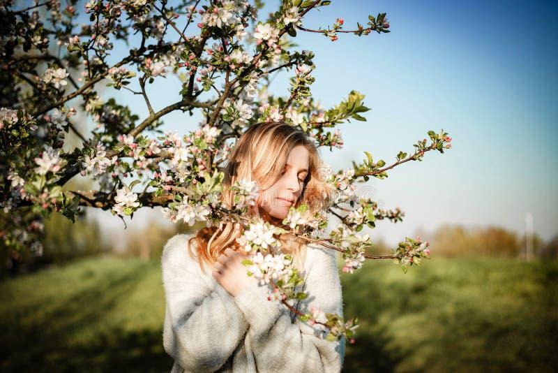 Πορτρέτο της νέας ξανθής γυναίκας με τους κλάδους μήλων σε ένα ηλιόλουστο βράδυ στοκ φωτογραφία με δικαίωμα ελεύθερης χρήσης