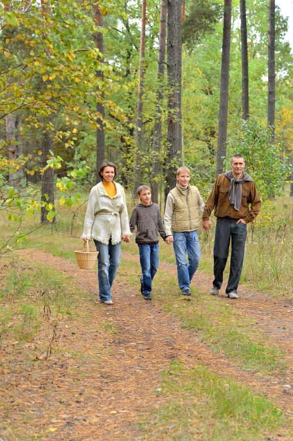 Πορτρέτο της τετραμελούς οικογένειας στο πάρκο στοκ εικόνες με δικαίωμα ελεύθερης χρήσης